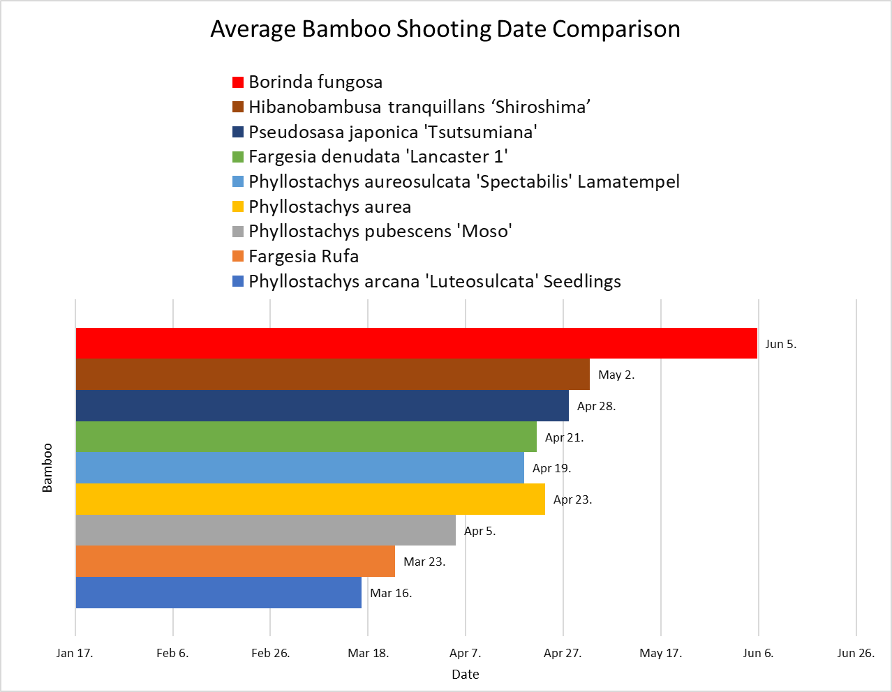 Comparison of bamboo shooting dates